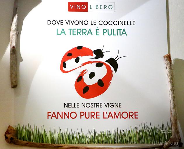 Cantina Vino Libero Eataly ad Albenga
